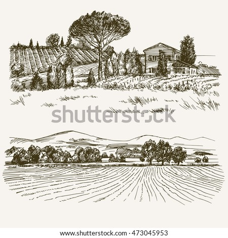 rural landscape with country