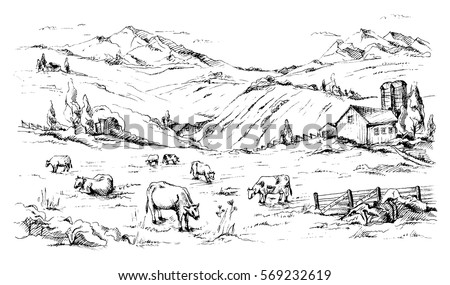 rural landscape with cows and