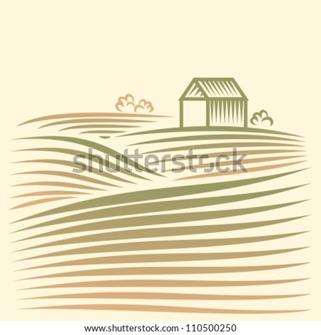 Rural landscape with fields and house