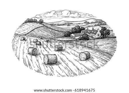 rural landscape with hay bales. ...