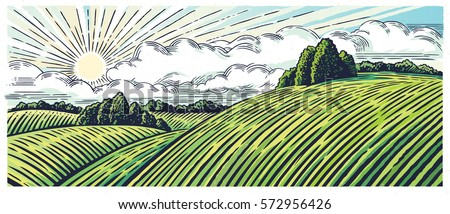 Rural landscape with hills and medows, in the graphic style, illustration is hand-drawn.