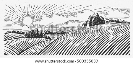 rural landscape with hills  in