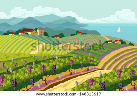 Rural landscape with vineyard and mountain and sea panorama
