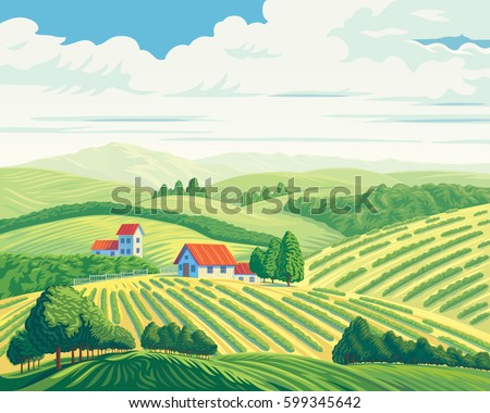 rural summer landscape with