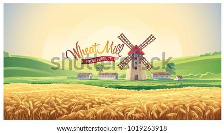 rural summer landscape with
