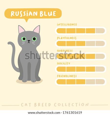 russian blue cat breed profile