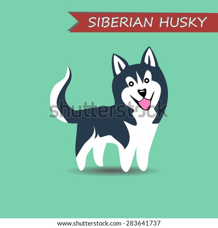 russian dog siberian husky