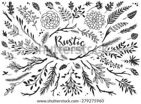 rustic decorative plants and