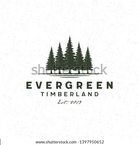 Rustic Retro Vintage Evergreen, Pines, Spruce, Cedar trees logo design