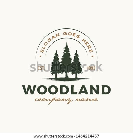 Rustic Retro Vintage Woodland, Evergreen, Pines, Spruce, Cedar trees logo design