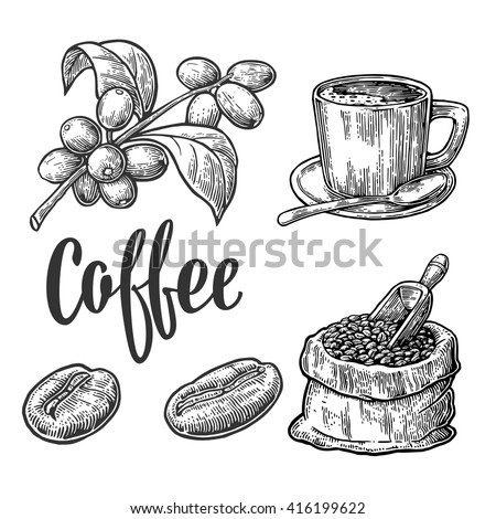 sack with coffee beans with