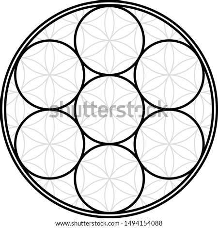 Sacred geometry flower of life, seven circles in the flower of life