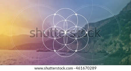 Sacred geometry. Mathematics, nature, and spirituality in nature. The formula of nature. Flower of life.