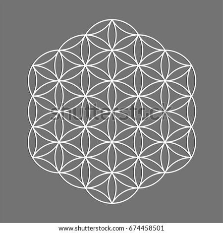 Sacred geometry symbol, Flower of Life for alchemy, spirituality, religion, philosophy, astrology emblem or label. White icon logo isolated on grey background.