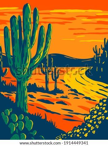 Saguaro Cactus at Dusk in Saguaro National Park in Tucson Arizona National Park California WPA Poster Art Stockfoto ©