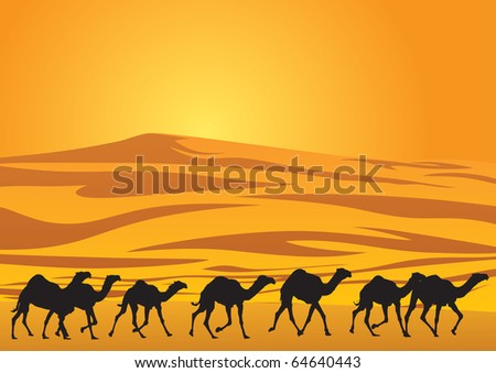 sahara scenic with camel