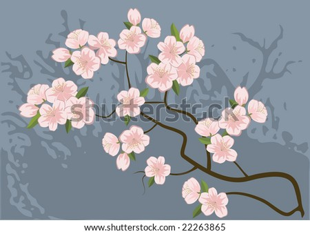 cherry tree drawing. cherry-tree,