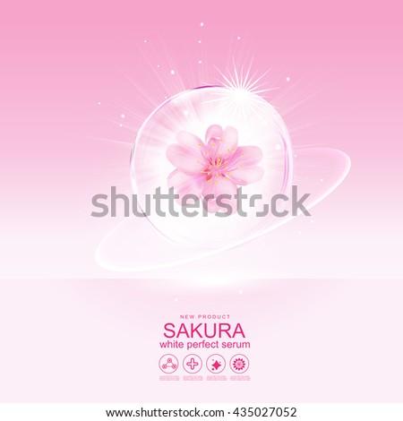 sakura flower white perfect