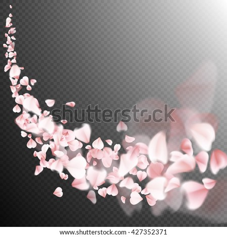 sakura flying petals on dark