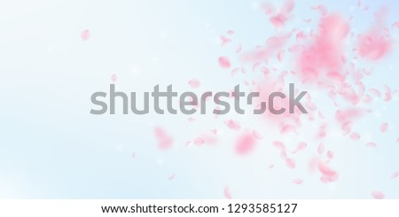 stock-vector-sakura-petals-falling-down-romantic-pink-flowers-explosion-flying-petals-on-blue-sky-wide