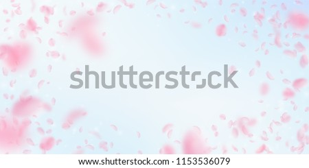 Sakura petals falling down. Romantic pink flowers vignette. Flying petals on blue sky wide background. Love, romance concept. Optimal wedding invitation.