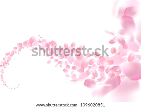Sakura petals flying vector background. Pink flower petals wave illustration isolated on white.