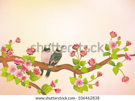 sakura red   bird