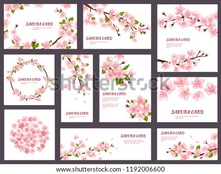 Sakura vector blossom cherry greeting cards with spring pink blooming flowers illustration japanese set of wedding invitation flowering template decoration isolated on white background