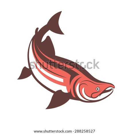 salmon fish logo template