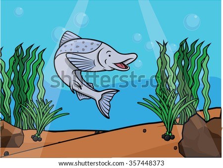 salmon fish underwater scene