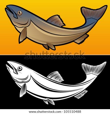 salmon fish  2 versions