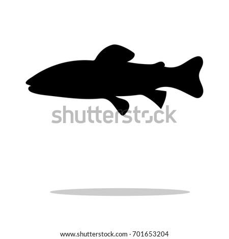 salmon trout fish black