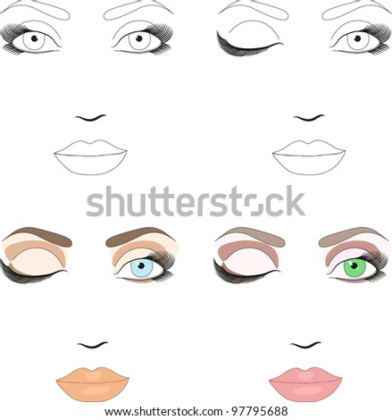 Free Makeup Sample on Samples Of Woman Face Scheme For Makeup Application  Set Of Classic