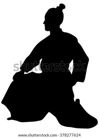 samurai  aikido action