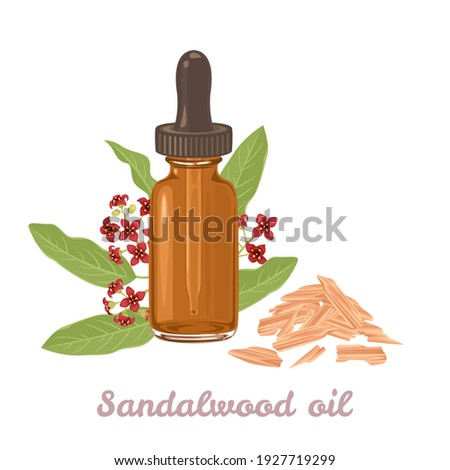 Sandalwood essential  oil amber glass dropper bottle isolated on white background. Sticks and fragrant flowers. Vector illustration in cartoon flat style. Foto d'archivio ©