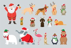 Santa Claus and Animals Wearing Christmas Costume, Winter and New Year Celebration