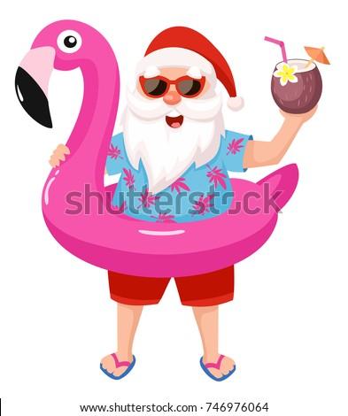 santa claus with flamingo