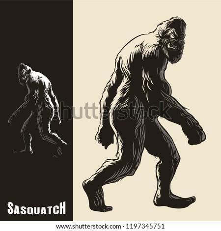 Sasquatch monkey gorilla walking