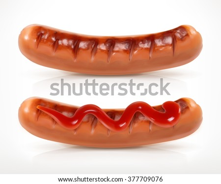 Sausage grilled, vector icon