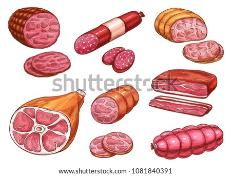 Sausage sketch set of beef and pork meat product. Ham, salami and bacon strip, smoked sausage, pepperoni and bologna, frankfurter, gammon and cured brisket icon for meat store and butcher shop design