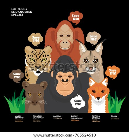 Save Me Campaign, save animals save the planet.