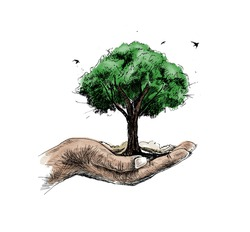 Save nature human hand holding tree against white background, Ecology and Earth day concept.