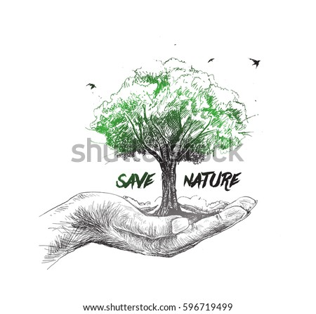 save nature human hand holding
