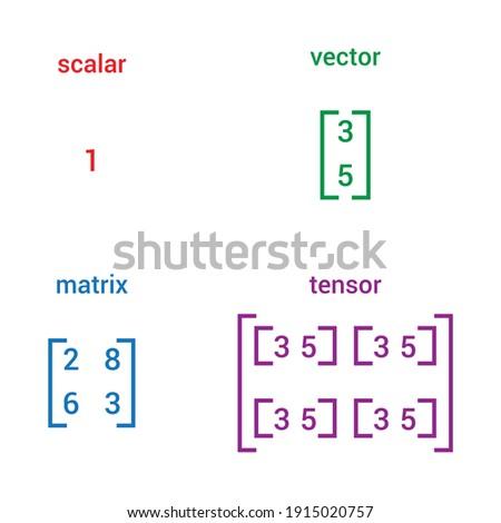 scalar vector matrix and tensor Foto stock ©
