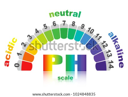 scale of ph value for acid and alkaline solutions, vector isolated or white background