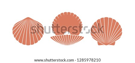 Scallop logo. Isolated scallop  on white background. Set Stockfoto ©
