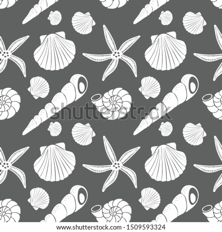 Scallop shells, cone shells, snail shells, starfish, white on dark gray background. Vector seamless pattern.