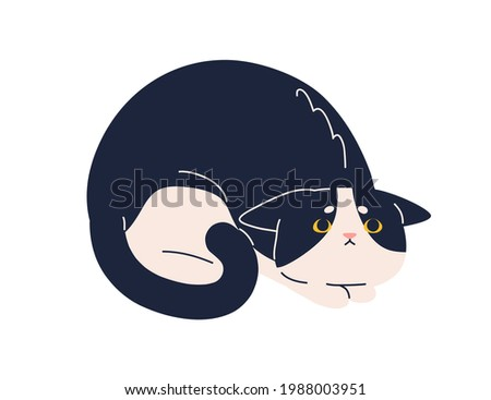 Scared frightened cat with mournful fearful look. Sweet kitty raising eyes up, praying for smth. Adorable kitten with pitying expression. Flat vector illustration of feline animal isolated on white Stock photo ©