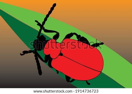 scarlet beetle in a continuous