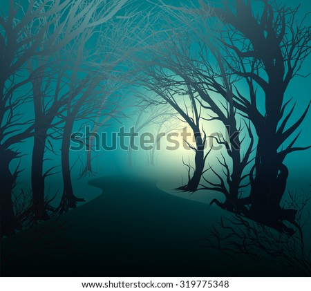 scary forest with light  park